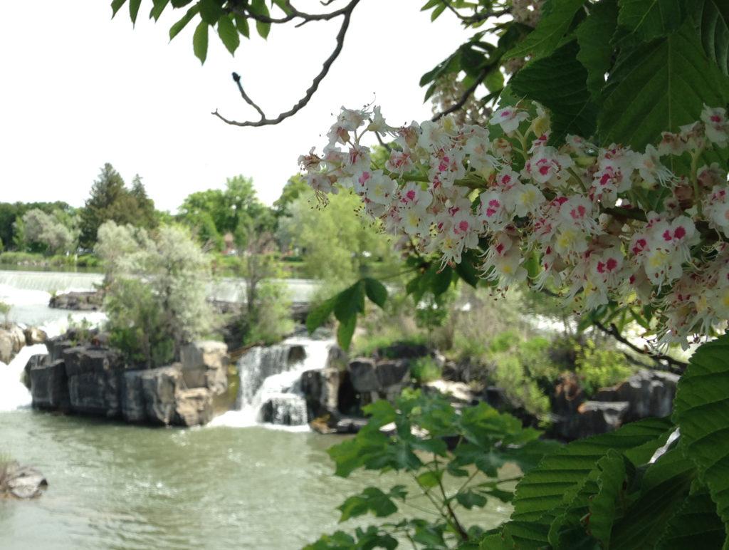 Idaho Falls Waterfalls Downtown Greenbelt - auto repair in idaho falls